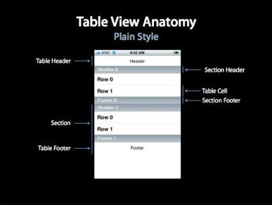 Table View Anatomy