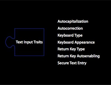 Text Input Traits