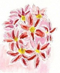 hyacinth2011