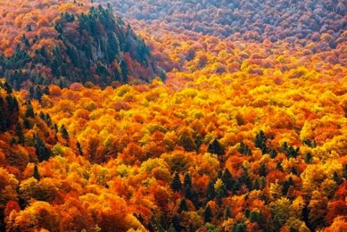 Balkan_Mountains